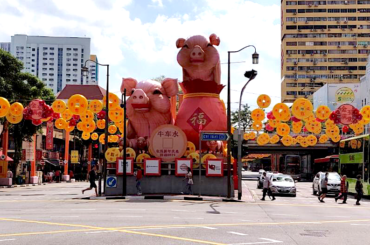 Capodanno cinese: benvenuto anno del maiale!