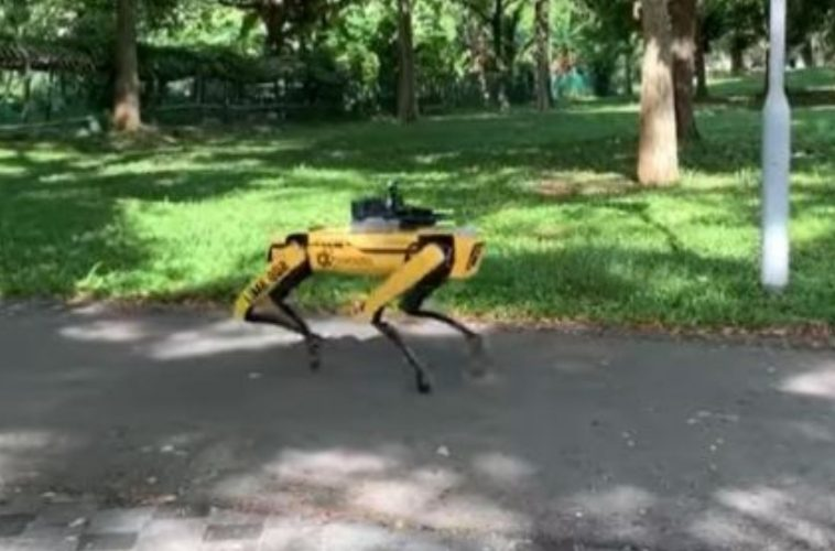 CANE ROBOT